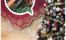 メリークリスマス☆彡